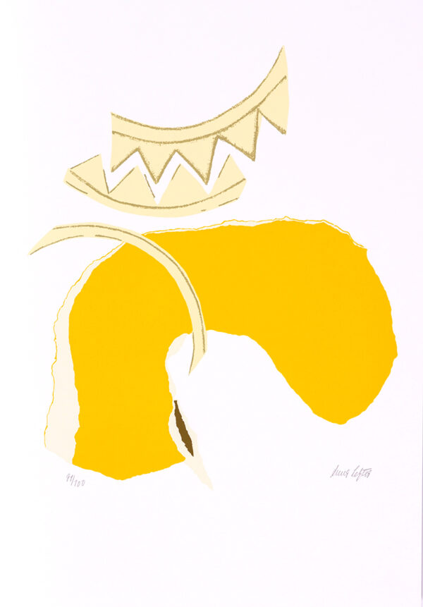 008 - Anna Letycia 50x35cm - serigrafia - ano tiragem