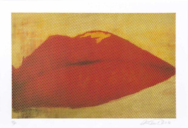 140 - Christina Oiticica - 48x33cm - Serigrafia (2)