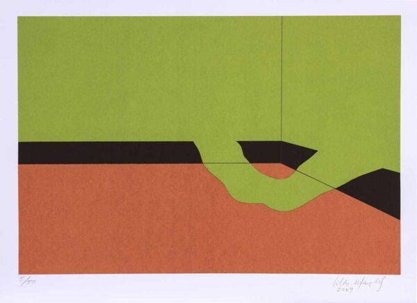 146 - Cildo Meireles - 50x70cm - Serigrafia - ano 2009 - tiragem 50 (2)