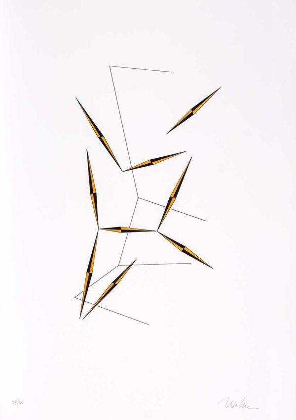 425 - Waltecio Caldas - 50x70cm - Serigrafia - Tiragem 60 (4)