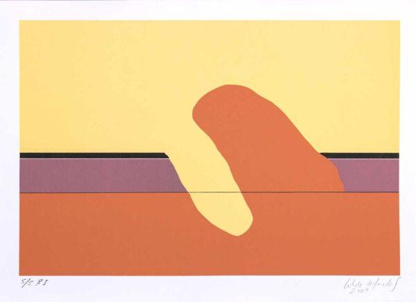 556 - Cildo Meireles - 50x70cm - Serigrafia - ano 2009 - tiragem 50 (1)