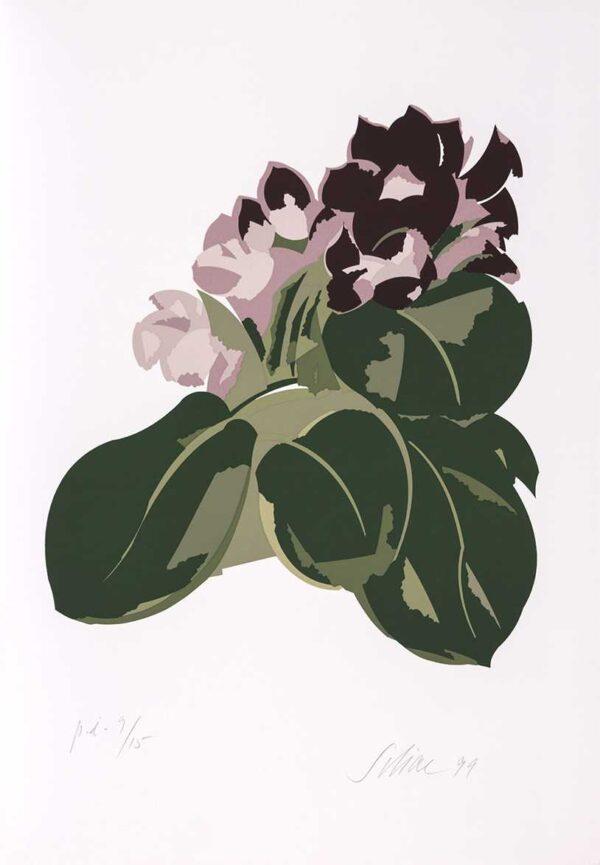 054 - Carlos Scliar - 50x70cm - Serigrafia - Ano 1999 - Tiragem 100 (5)