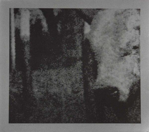 297 - Paulo Vivaqua - 40x40cm - Litografia - Ano 2007 - Tiragem 30