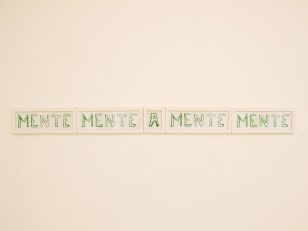 489 - Ernesto-Neto - 30x90cm - Serigrafia - ano 2007