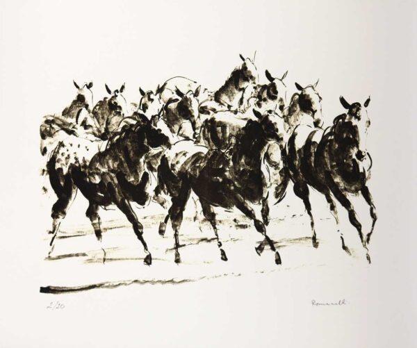 341 - Romanelli - 50x70cm - Serigrafia - tiragem 20 (2)